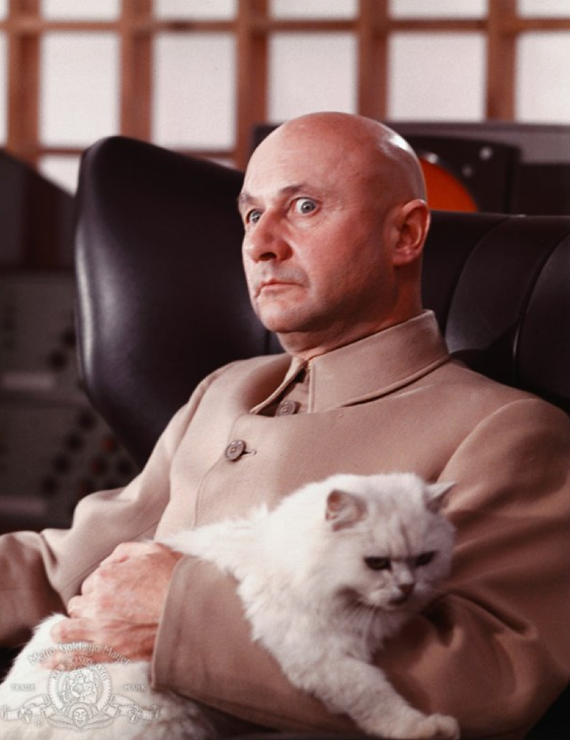 The-cat-in-the-hands-of-pervy-Donald-Pleasance-in-You-Only-Live-Twice-1967