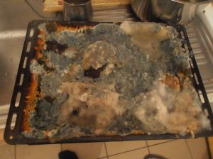 1024px-Mould_in_meat_and_rice